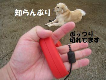 IMG_5910.jpg