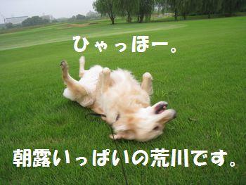 IMG_5912.jpg