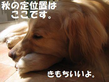 IMG_6055.jpg