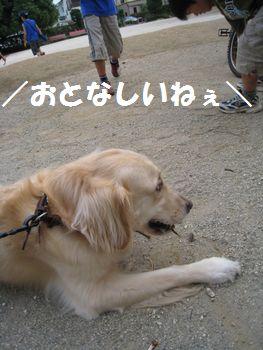 IMG_6113.jpg