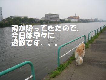IMG_6216.jpg