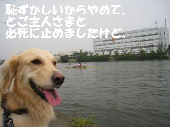 IMG_6228.jpg
