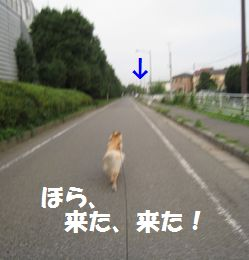 IMG_6343.jpg