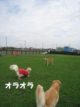 IMG_6511.jpg