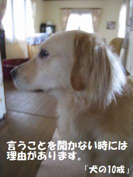 IMG_6640.jpg