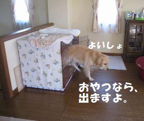 IMG_6857.jpg
