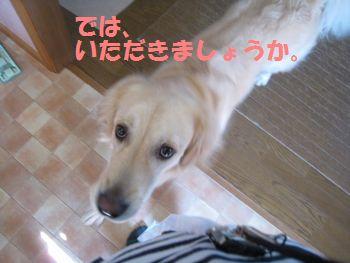 IMG_6858.jpg