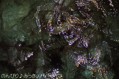borabora20045.jpg