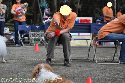 dogsportfes08.jpg