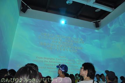 expo2010224.jpg