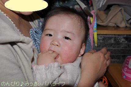 fugu114.jpg