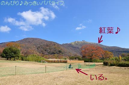 gora31.jpg
