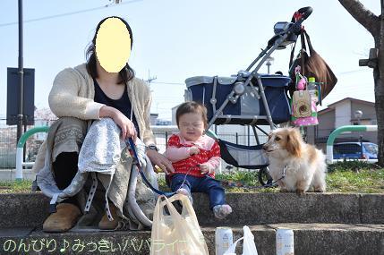 hanami201202.jpg