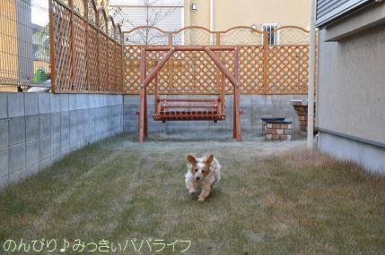 harisotsugyo2.jpg