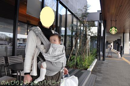 ibaraki2012305.jpg