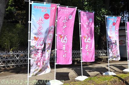 ibaraki2012306.jpg