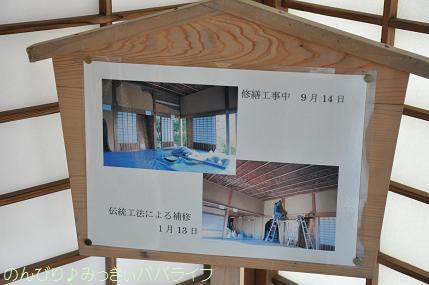 ibaraki2012316.jpg