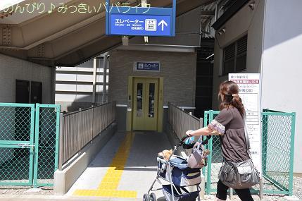 kawagoe101.jpg