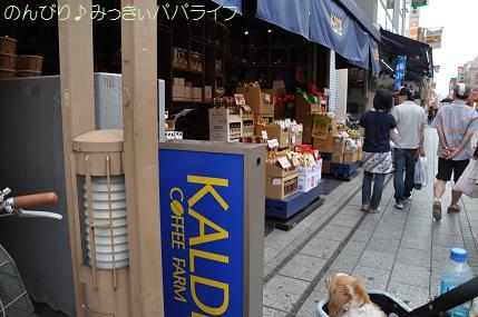 kawagoe124.jpg