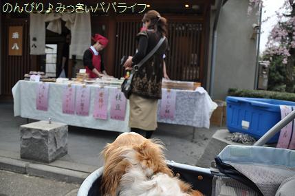 kichijoji8.jpg