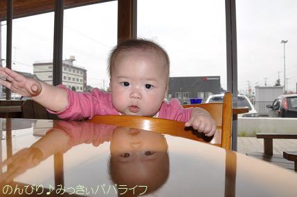 kumakaki2.jpg