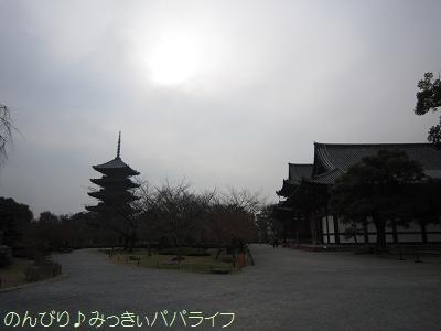 kyoto14.jpg