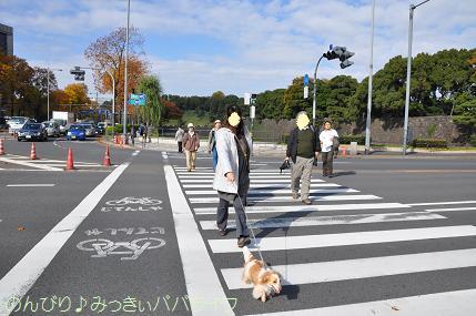 motsumotorou3.jpg