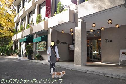 motsumotorou4.jpg