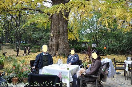 motsumotorou6.jpg