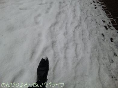 niigata20100112.jpg