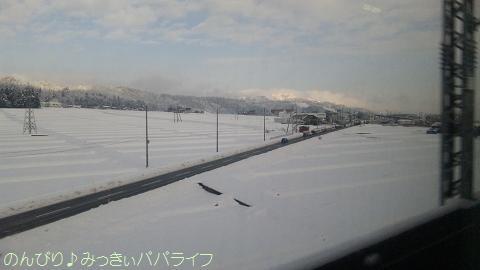 niigata201112192.jpg