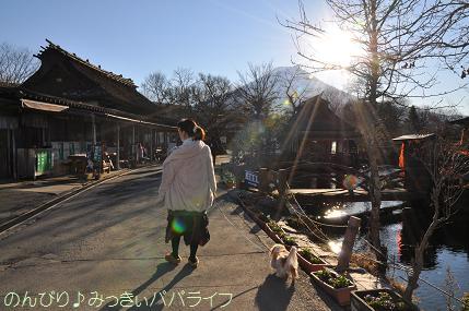 oshino20111206.jpg