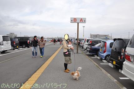 petfair201201.jpg