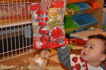 reitoutakoyaki1.jpg