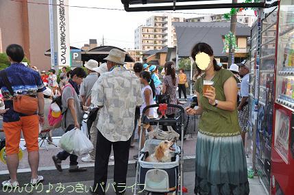 sakadoyosakoi201004.jpg