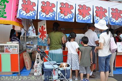 sakadoyosakoi201005.jpg