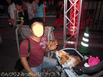 sakadoyosakoi201008.jpg
