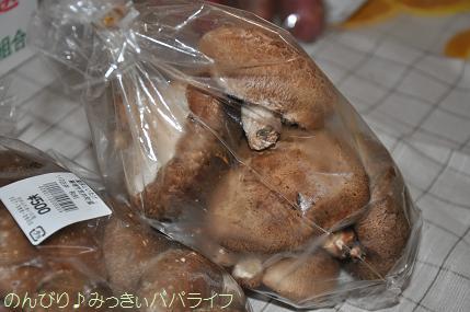 shiitake3.jpg