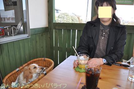shitsunai4.jpg