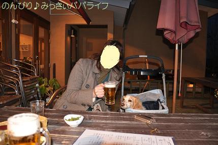 tassai1.jpg