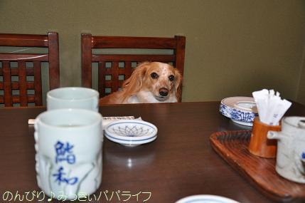 tateyama20102009.jpg