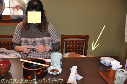 tateyama20102013.jpg