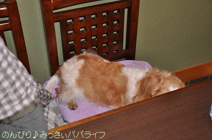 tateyama20102014.jpg