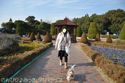 tateyama20102018.jpg