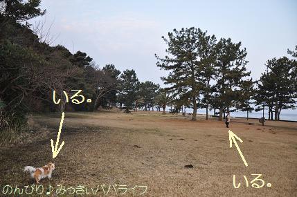 tateyama20102047.jpg