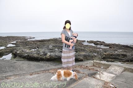 tateyama20117016.jpg