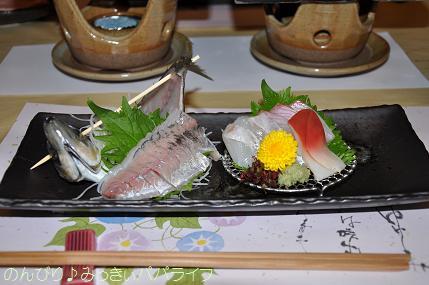 tateyama20117022.jpg