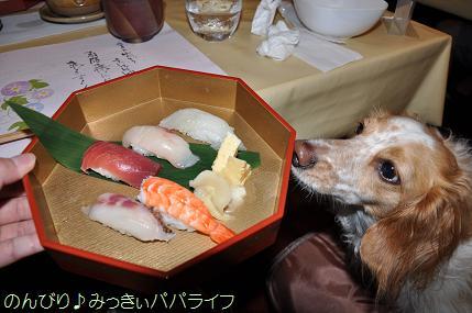 tateyama20117027.jpg