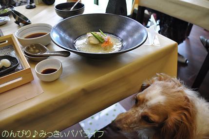 tateyama20117037.jpg
