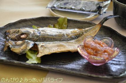 tateyama20117038.jpg